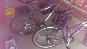 2 Bikes For Sale. 1 Male, 1 Female. Sold Together or Separately Regina Regina Area image 3
