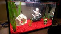 New complete fish tank with everything you need! - 20 gallon