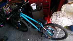 2013 specialized p2 pro.  Large frame