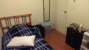 50 Collingwood St. Room for Rent in 3 bed apt - Nov to Apr Kingston Kingston Area image 2
