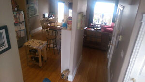 1 Bedroom in Downtown Dartmouth Available Sept-Oct.