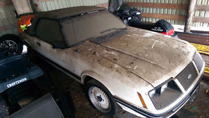 Perfect barn find for ford lovers