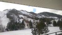 True Ski in Ski out Chalet