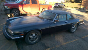 1987 Jaguar xjs V12 Great shape need to sell.