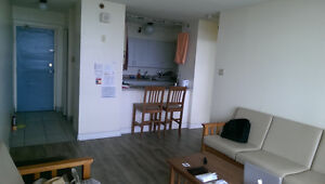 Sublet - Full furnished apartment (available Dec 15th to Sep 1st Kingston Kingston Area image 2