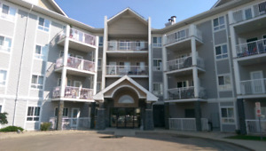 2 bedroom apartment for rent Hamptons