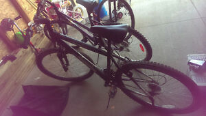 2 Bikes For Sale. 1 Male, 1 Female. Sold Together or Separately Regina Regina Area image 5