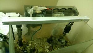 30 Gal Aquarium Lights, Filter and other accessories Windsor Region Ontario image 1