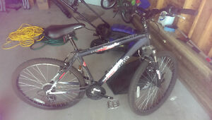 2 Bikes For Sale. 1 Male, 1 Female. Sold Together or Separately Regina Regina Area image 10