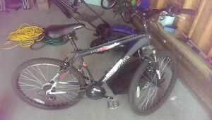 2 Bikes For Sale. 1 Male, 1 Female. Sold Together or Separately Regina Regina Area image 10