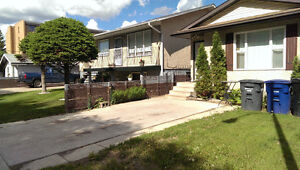 Large 2 br- Legal - Pet Friendly Suite + Utilities are Included