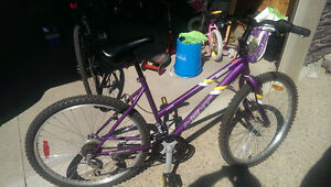2 Bikes For Sale. 1 Male, 1 Female. Sold Together or Separately Regina Regina Area image 9