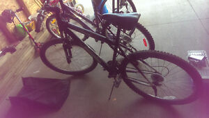 2 Bikes For Sale. 1 Male, 1 Female. Sold Together or Separately Regina Regina Area image 4
