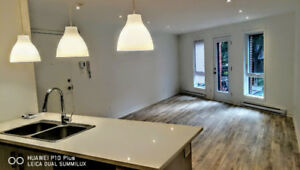 LUXURY CONDO 2 bed rooms NEW CONSTRUCTION | 6 Appliances 1000ft2
