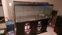 125 Gallon Fish Tank & stand C/W filter, lights, heater