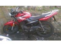 Honley 125 CC HD1 / 2013