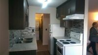 BRIDGELAND NEWLY RENOVATED 2 Bedroom, Avail. Immediately!