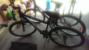 2 Bikes For Sale. 1 Male, 1 Female. Sold Together or Separately Regina Regina Area image 7