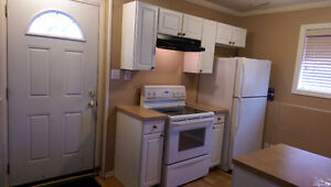 WalkOut / Bilevel Basement 2 B/R Suite in Martindale