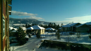 Stunning 2 Bedroom 2 Bath 1224 Sq.ft Condo in Lake Country, BC