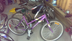 2 Bikes For Sale. 1 Male, 1 Female. Sold Together or Separately Regina Regina Area image 8