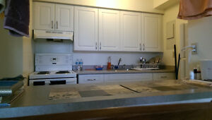Sublet - Full furnished apartment (available Dec 15th to Sep 1st Kingston Kingston Area image 3