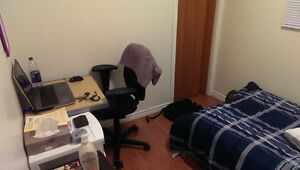 50 Collingwood St. Room for Rent in 3 bed apt - Nov to Apr Kingston Kingston Area image 3