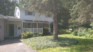 Renovated 5 Bedrooms+2 Washrooms In Brooklin for Rent