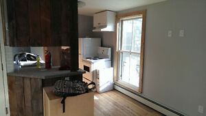 Bachelor Unit Available For Rent, Close to Queen's & Downtown