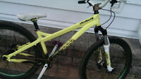 2009 Specialized P3 Dirt Jumper