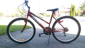 Youth 18 speed Supercycle Sport MTB