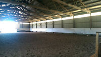Horse Indoor Stalls Available