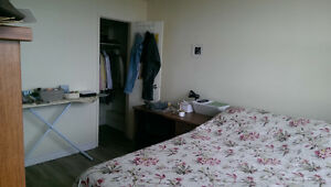 Sublet - Full furnished apartment (available Dec 15th to Sep 1st Kingston Kingston Area image 4
