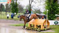 Olympic Eventing: U.S. Equestrian Eventing Team Claims Gold, Spo