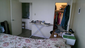Sublet - Full furnished apartment (available Dec 15th to Sep 1st Kingston Kingston Area image 5