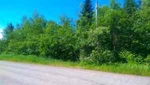 1 acre lot.  Hampton side of Guthrie road.