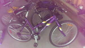 2 Bikes For Sale. 1 Male, 1 Female. Sold Together or Separately Regina Regina Area image 2