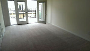 30% Discount-Carpet Cleaning+Shampoo+Deodorization+Stain removal Kitchener / Waterloo Kitchener Area image 2