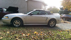 Spring Special...Mustang Convertible  Flordia Car Trade or Buy..
