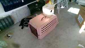 Small Animal Carrier/Kennel or OBO
