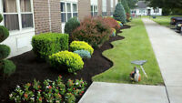LANDSCAPING-LAWN CARE-TREE PLANTING-TEL- (780) 742-6039