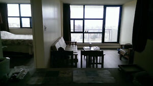 Sublet - Full furnished apartment (available Dec 15th to Sep 1st Kingston Kingston Area image 1