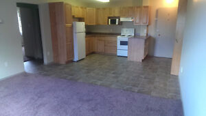 2 Bedroom Downtown For Mature Adult Living.