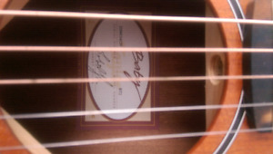 Taylor Baby BT2  6 string acoustic guitar  350.00 OBO