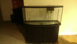 75 gallon saltwater fish tank for sale in Red Deer