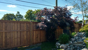 DECK, FENCE & SHED CONSTRUCTION & RESIDENTIAL PAINTING
