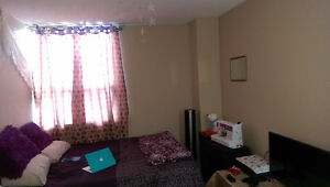 FURNISHED Apartment (Bedroom + Living Room) on South Park Street