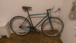48cm fixed gear bike with velocity / formula / surly wheelset