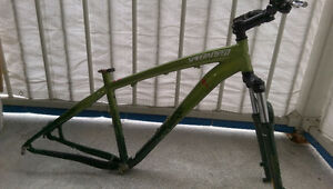 Specialized P1 All Mountain Disc Hardtail Frame