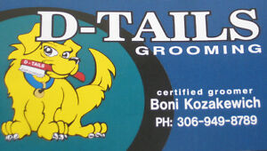 D-Tails Dog Grooming